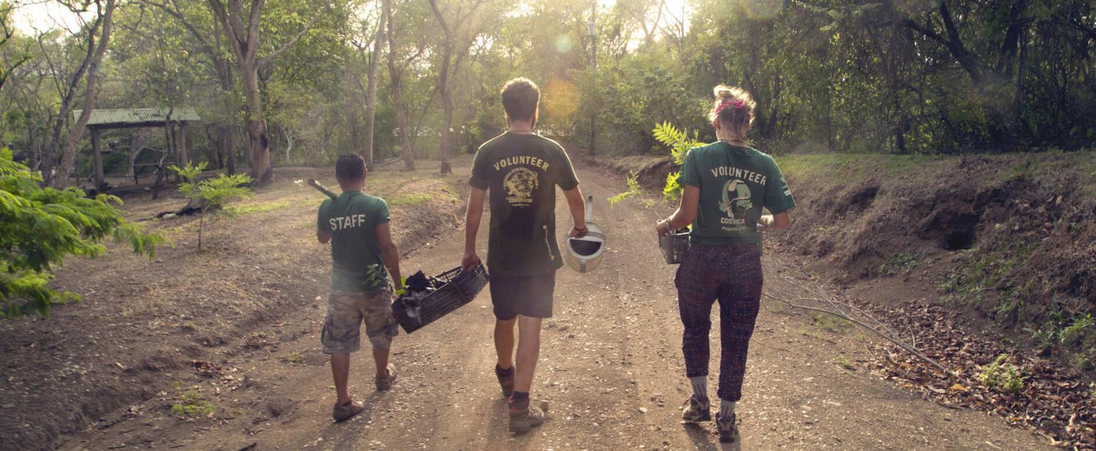 Projects Abroad vrijwilligers in het buitenland leveren een belangrijke bijdrage aan natuurbescherming in Costa Rica.